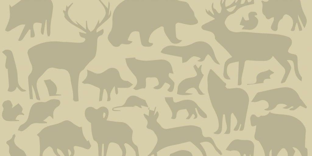 djurmonster